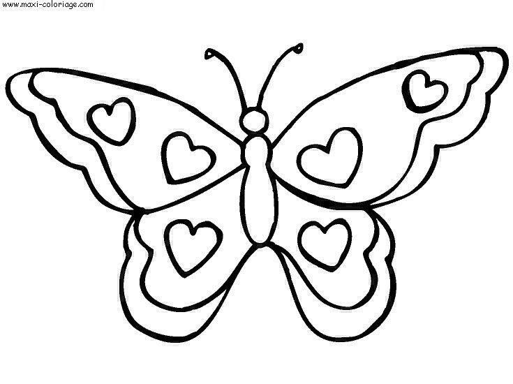 Jolie papillon